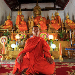 A monk in his saffron robes meditates infront of many golden buddhas in an ancient pagoda in Thailand