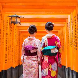Two young Maiko in colorful Kimono, walk through the thousands of torii gates at the Fushimi Inari Shrine (伏見稲荷大社, Fushimi Inari Taisha) located in Kyoto.