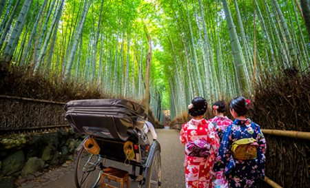 Two women dressed in traditionakimono walk past a rickshaw in the famed Bamboo Grove, Kyoto, Japan